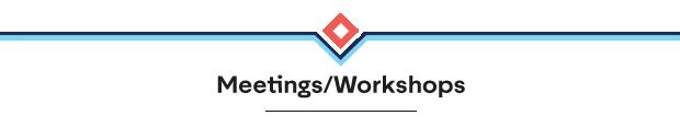 Meetings/Workshops