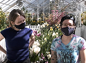 Happy Spring! Welcome to the Bulb Show