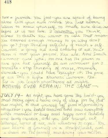 Sylvia plath essay