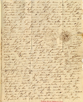 One page of an eight page letter from Sophia Peabody to Maria Chase, Salem, Massachusetts, April 24, 1834