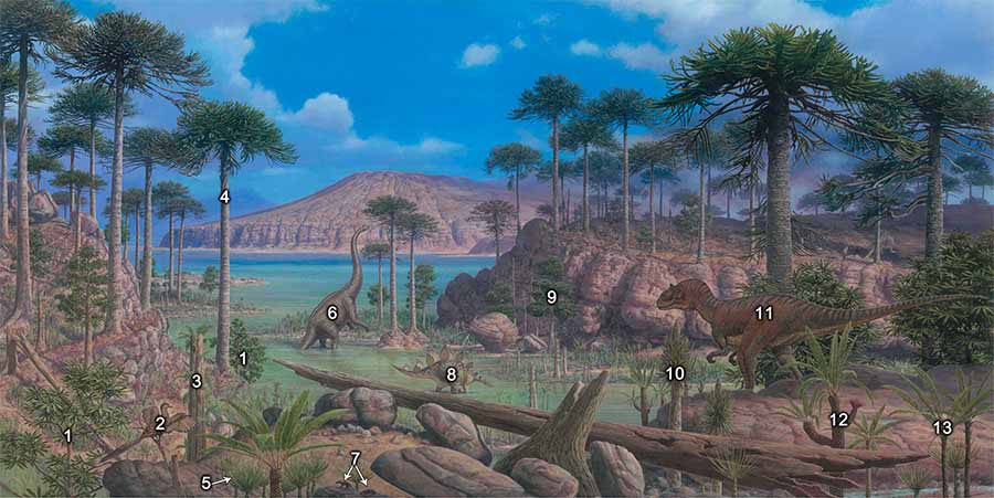 A panel from the plant evolution mural