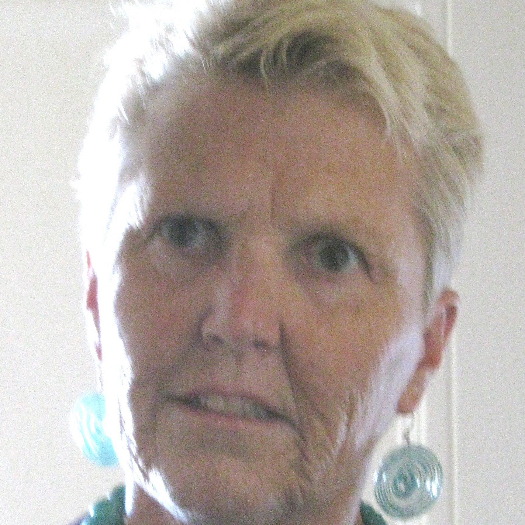 Sarah Collins Honenberger