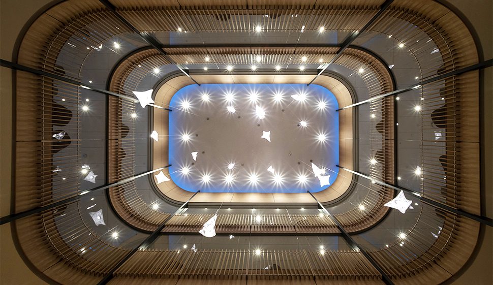 View looking skyward inside the Neilson library