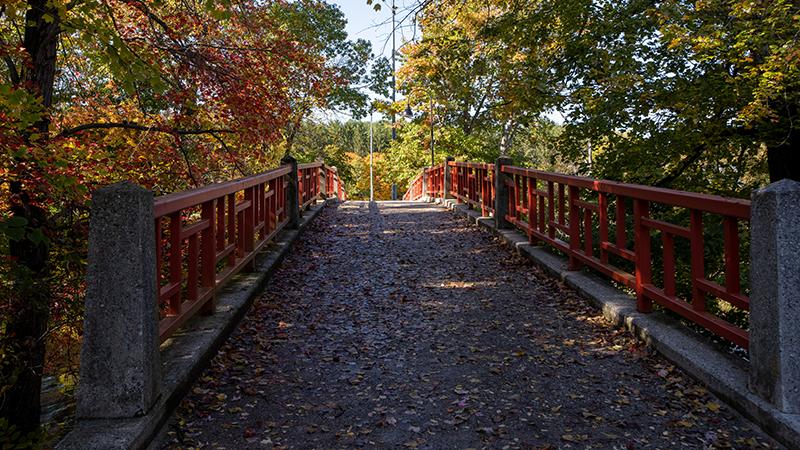 campus bridge in fall