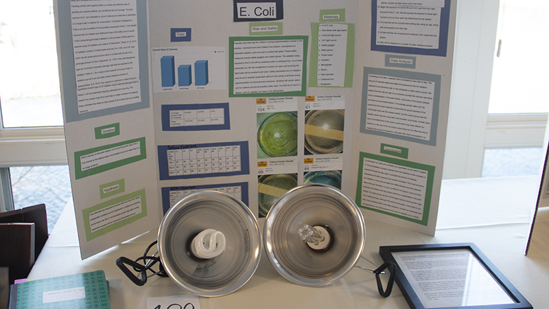 a student project at the science fair