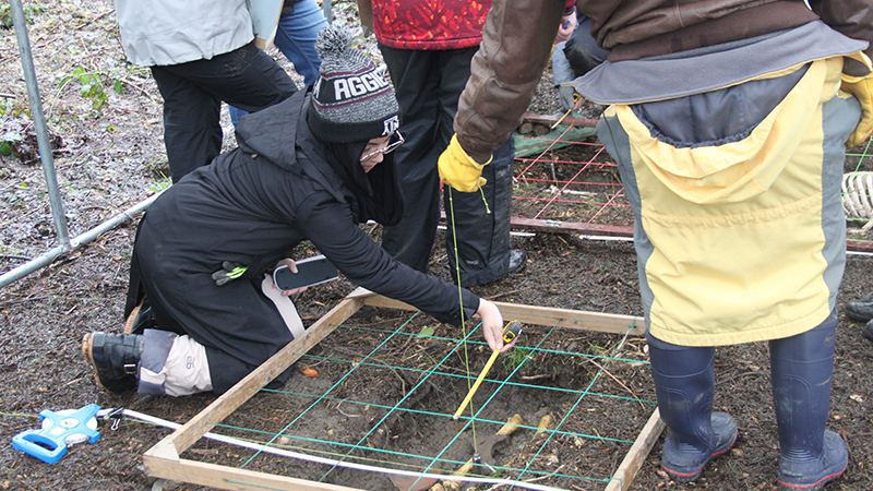 Students research at the Irish Archaeological Field School