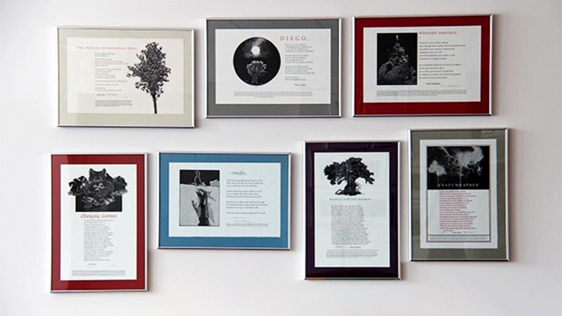 Photo of framed broadsides in The Poetry Center