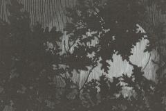 "Charles Simic broadside, ""Leaves at Night"""