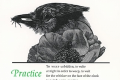 """Ellen Bryant Voigt broadside, """"Practice"""""""