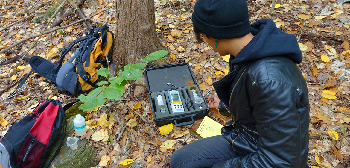 Scientific inquiry flourishes at Smith's MacLeish Field Station.