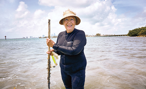 Anitra Thorhaug in April plants seagrasses in Biscayne Bay