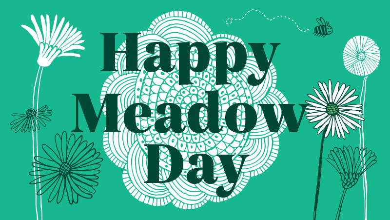 Happy Meadow Day