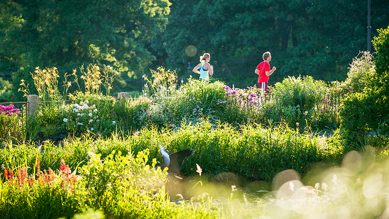 Two joggers running past the Botanic Garden in summer