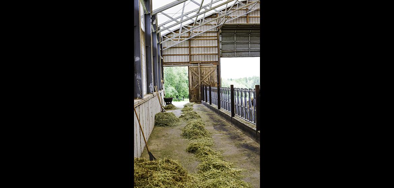 Sidehill Farm