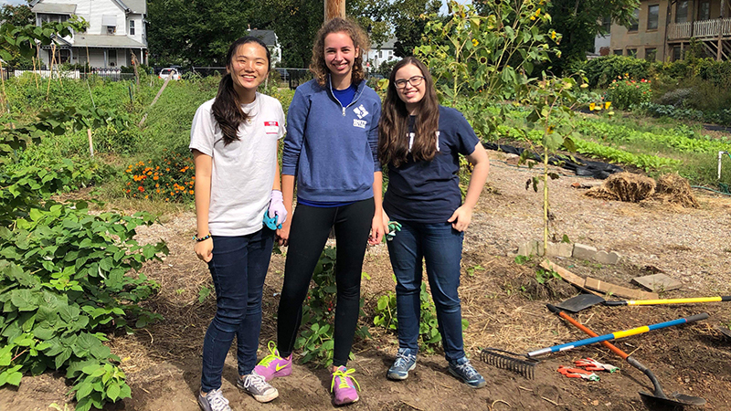 Three students in the field for Jandon Community Service Office