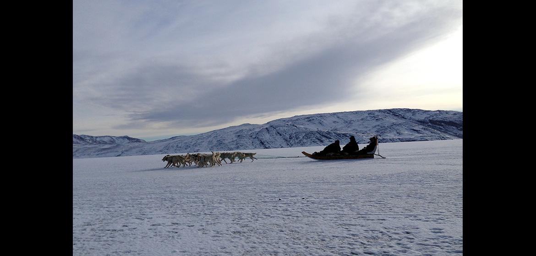 Liz Young, Greenland
