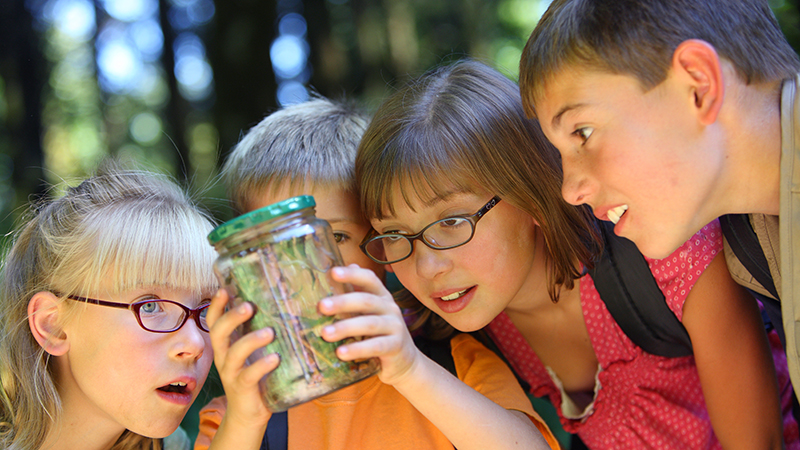 Group of four young children looking at bug in jar