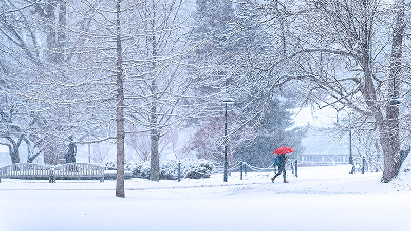 A single student with a red umbrella walking in a snowstorm