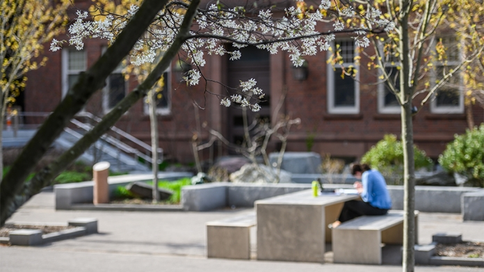 Smith campus in spring with a student studying outside