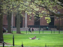 student laying on the lawn in spring