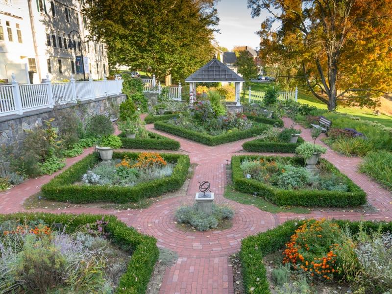 Happy Chase garden