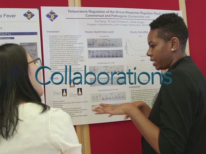 Celebrating Collaborations: Students and Faculty Working Together poster session