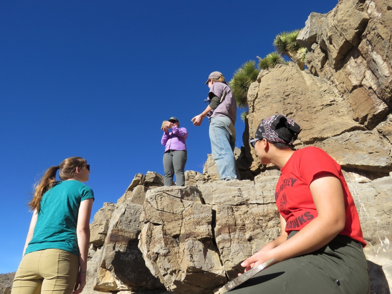 geologists in Nevada