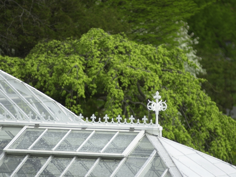 lyman greenhouse roof