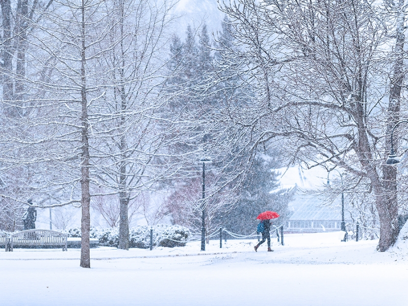 Student with a red umbrella walking in a snowstorm