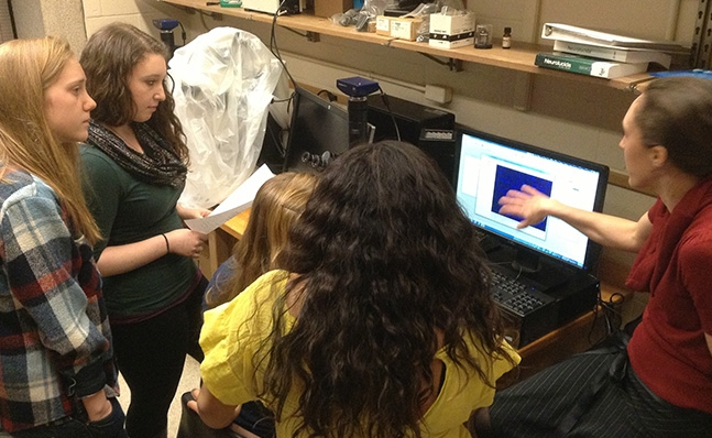 Neuroscience students reviewing data in the lab