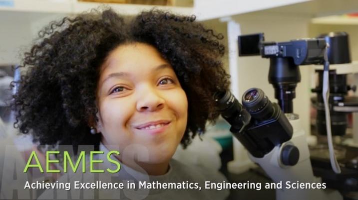 AEMES Program