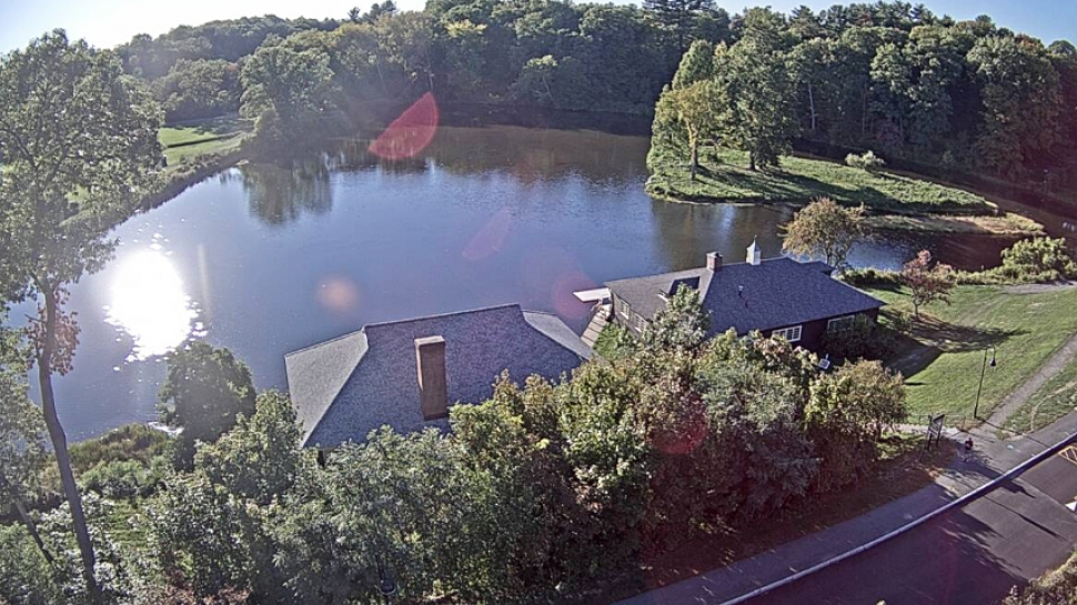 Paradise Pond seen from the top of the science center